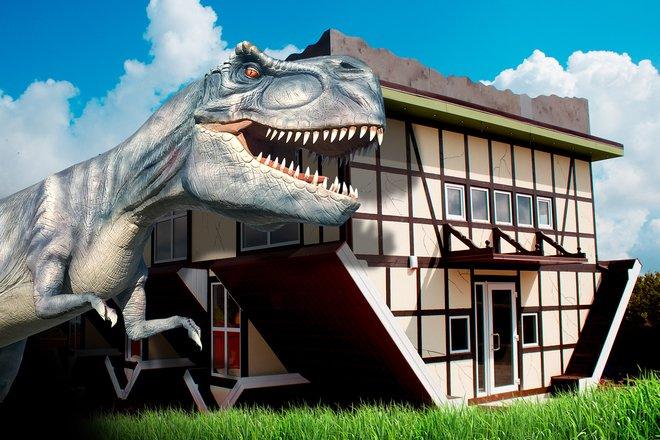 Dino parkas