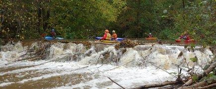 Ekstremalus plaukimas Žvelsos upe